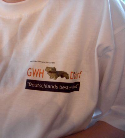 Shirt im Detail