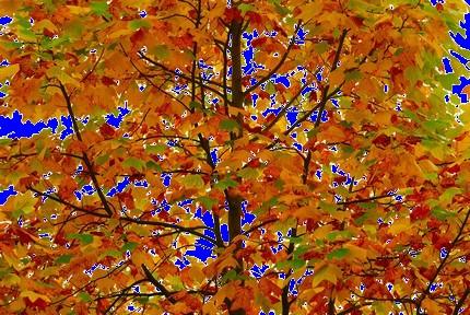 Bild  herbst2 Herbst richtig kitschig