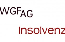 WGF_AG_Insolvenz_Details